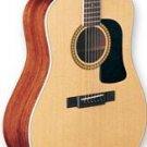 Washburn D10S Natural Acoustic Guitar FREE SHIP #1 Guitar Under $500 www.tmscad.ecrater.com