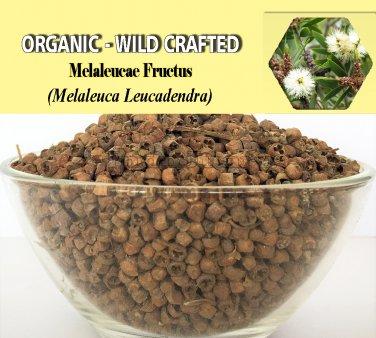 2 Lb/908g MELALEUCAE FRUCTUS Melaleuca Leucadendra Organic Wild Crafted 100% Fresh