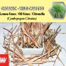 1 Lb / 454g Lemon Grass Oil Grass Citronella Cymbopogon Citratus Organic Wild Crafted Fresh