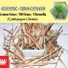 2 Lb / 908g Lemon Grass Oil Grass Citronella Cymbopogon Citratus Organic Wild Crafted Fresh