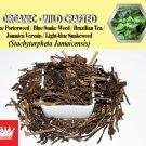 1 Lb / 454g Blue Porterweed Blue Snake Weed Jamaica Vervain Stachytarpheta Jamaicensis FRESH