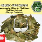 8 Oz / 227g Orange Jessamine Chinese Box Mock Orange Murraya Paniculata Organic Wild Crafted