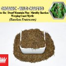8 Oz / 227g False Ru Pine Shrubby Baeckea Dwarf Mountain Baeckea Frutescens Organic Wild