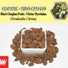 1 Lb / 454g Black Chuglam Fruits Citrine Myrobalan Terminalia Citrina Organic Wild Crafted