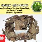 2 Lb / 908g Sugar Apple Leaves Sweetsop Custard Apple Ata Annona Squamosa Organic Wild Fresh