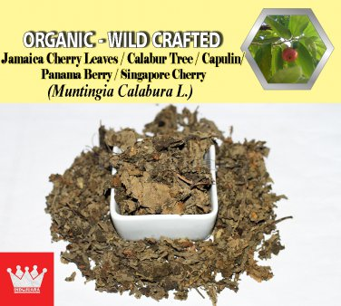 8 Oz / 227g Jamaica Cherry Leaves Kerson Capulin Panama Berry Muntingia Calabura Wild Crafted
