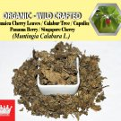 2 Lb / 908g Jamaica Cherry Leaves Kerson Capulin Panama Berry Muntingia Calabura Wild Crafted