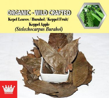 3 Oz / 84g Kepel Leaves Burahol Keppel Fruit Stelechocarpus Burahol Organic Wild Crafted
