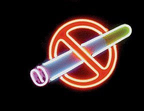 No Smoking Flowing Neon Sign