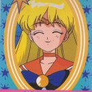 Sailor Moon Cardzillion 9