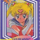Sailor Moon Cardzillion 24