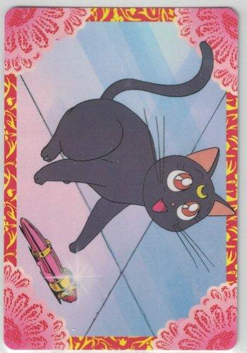 Sailor Moon Card #20 Banpresto Set 1 Luna