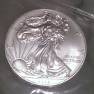 2013 Liberty Silver Dollar