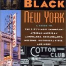 Discovering Black New York : A Guide to the City's Most Important African...