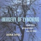 Imagery of Lynching : Black Men, White Women, and the Mob by Dora Apel (2004,...