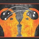 A Counselor's Introduction to Neuroscience by Jim McHenry, Angela M. Sikorski...