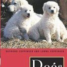Dogs : A New Understanding of Canine Origin, Behavior and Evolution by...