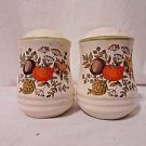 Vintage Retro Kitchen Salt & Pepper Shakers Ceramic Stoneware Herb Vegetable