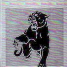 1984 Perris Valley Junior High School Panther Yearbook