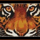 Cross-Stitch Embroidery Color Pattern with DMC codes - Beautiful Tiger Eyes
