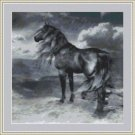 Cross-Stitch Embroidery Color PATTERN with DMC thread codes - Sea Storm Horse
