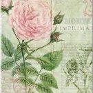 Beautiful Collectible Flower Kitchen Fridge Refrigerator Magnet - Pink Wild Rose
