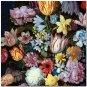 Beautiful Collectible Flower Kitchen Fridge Refrigerator Magnet - Still Life #22