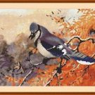 Cross-Stitch Embroidery Color PATTERN with DMC thread codes - Autumn Blue Jay