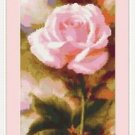 Cross-Stitch Embroidery Color Pattern with DMC codes - Pink English Rose