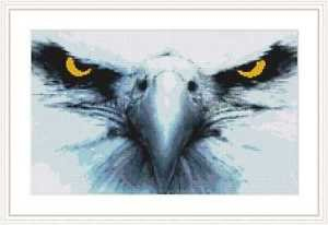 Cross-Stitch Embroidery Color Pattern with DMC codes - Eagle Eyes