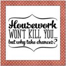Beautiful Fun Decor Design Collectible Kitchen Fridge Magnet - Housework Funny