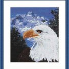 Cross-Stitch Embroidery Color Pattern with DMC codes - White Head Mountain Eagle