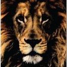 Beautiful Decor Design Collectible Kitchen Fridge Magnet - Grunge Male Lion