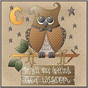Primitive Country Folk Art Kitchen Refrigerator Magnet - Wisdom Owl