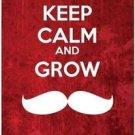 Keep Calm Collectible Art Kitchen Fridge Refrigerator Magnet - Grow Mustache