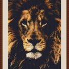 Cross-Stitch Embroidery Color PATTERN with DMC thread codes -Beautiful Lion Face