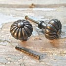 PAIR OF REGENCY STYLE CAST IRON DOOR DRAWER KNOB FURNITURE KITCHEN HANDLE LP10