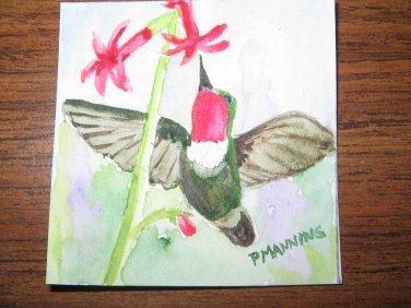 Original miniature watercolor painting Hummingbird
