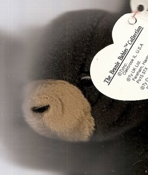 "Black Bear Beany Baby, mint condition ""Blackie"""
