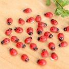 50 Pcs/Lot Stylish Mini Ladybug Decoration Lovely Beatles Micro Landscape Gardening