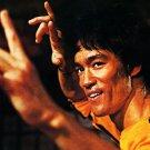 Retro Large Silk Poster -  Kung Ku Master Bruce Lee Art Wall Hmoe Deco Brand New