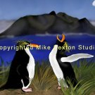 The Rising Hope (macaroni penguins Print)