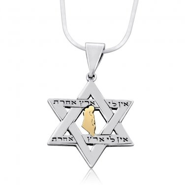 Sterling Silver and Gold Star of David Necklace