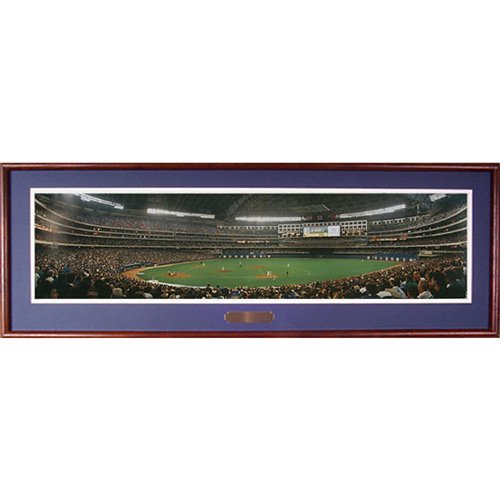 Everlasting Images Toronto Blue Jays SkyDome Deluxe Framed Photo