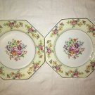 "2 THOMAS Florabella handpainted Bavaria china octogan dinner plates 9"" flowers"