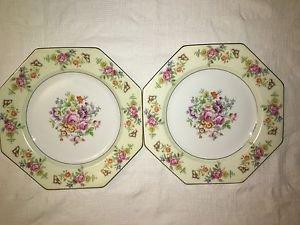 "2 THOMAS Florabella handpainted Bavaria china octogan dinner plates 9"" flowers"