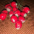 16 vintage laquered millinery wreath fruit wire picks CHRISTmas deco cranberries