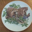 RICHARD TIMM porcelain hand painted numbered plate raccons gold trim #804 GUC