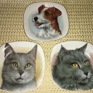 """Set 3 small 5"""" square CROWN Starrordshire England collector plates cats dogs pet"""