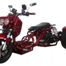 Ice Bear MADDOG 50cc Motor Trike PST50-19N Price 550usd
